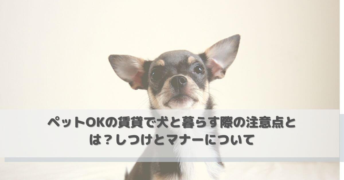 ペットOKの賃貸で犬と暮らす際の注意点とは?しつけとマナーについて